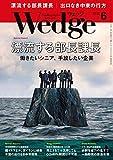 Wedge (ウェッジ) 2019年6月号【特集】漂流する部長課長 働きたいシニア、手放したい企業