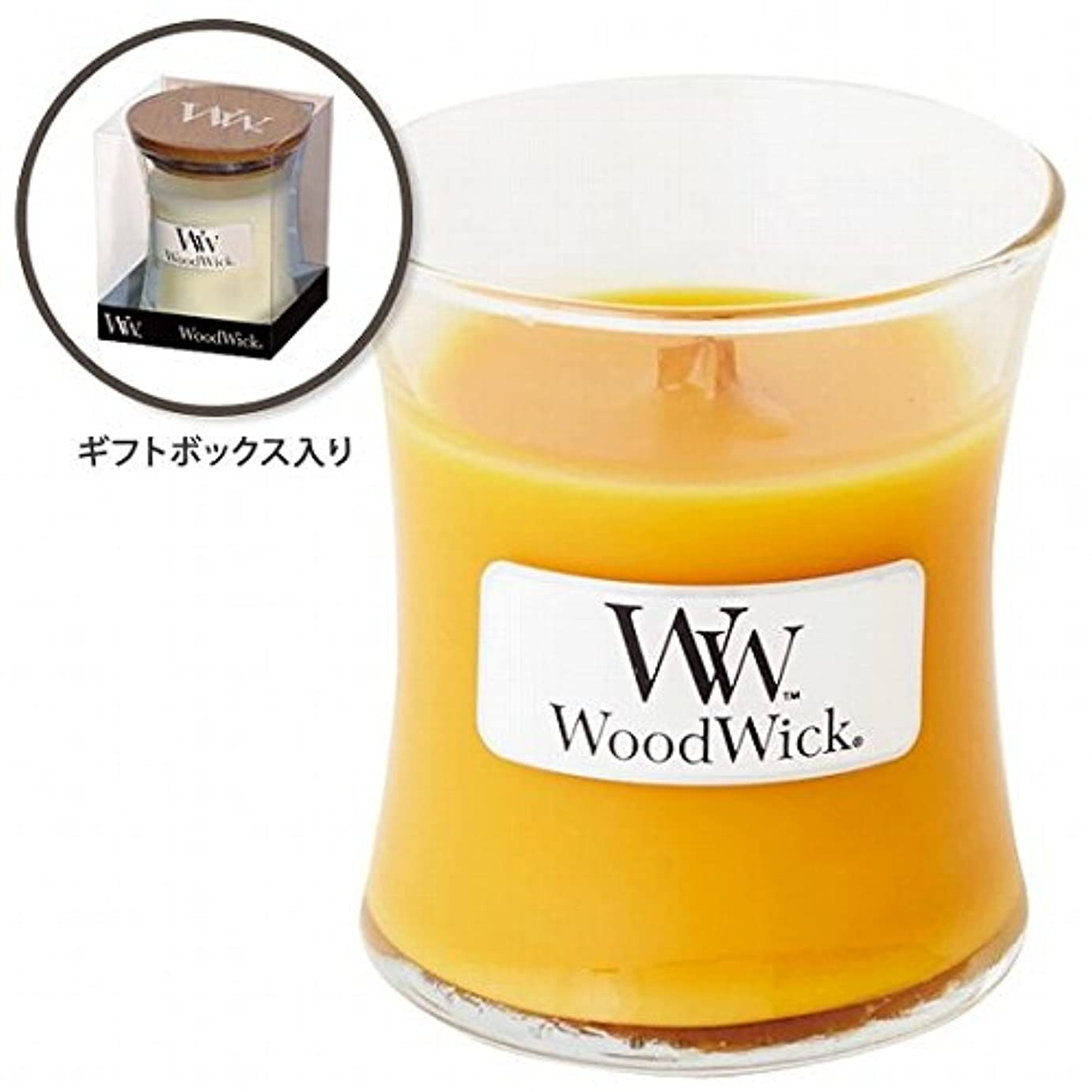 右たくさんのピアノWoodWick(ウッドウィック) Wood WickジャーS 「スパークリングオレンジ」(W9000562)