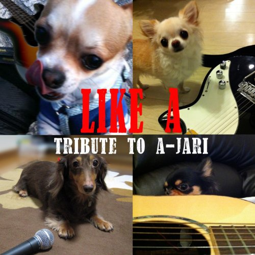LIKE A <Tribute to A-JARI>