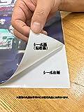 絵画風 壁紙ポスター (はがせるシール式) さくら 桜 一重桜 ソメイヨシノ コヒガン サクラ 開花 春 キャラクロ FSKR-008A2 (A2版 594mm×420mm) 建築用壁紙+耐候性塗料