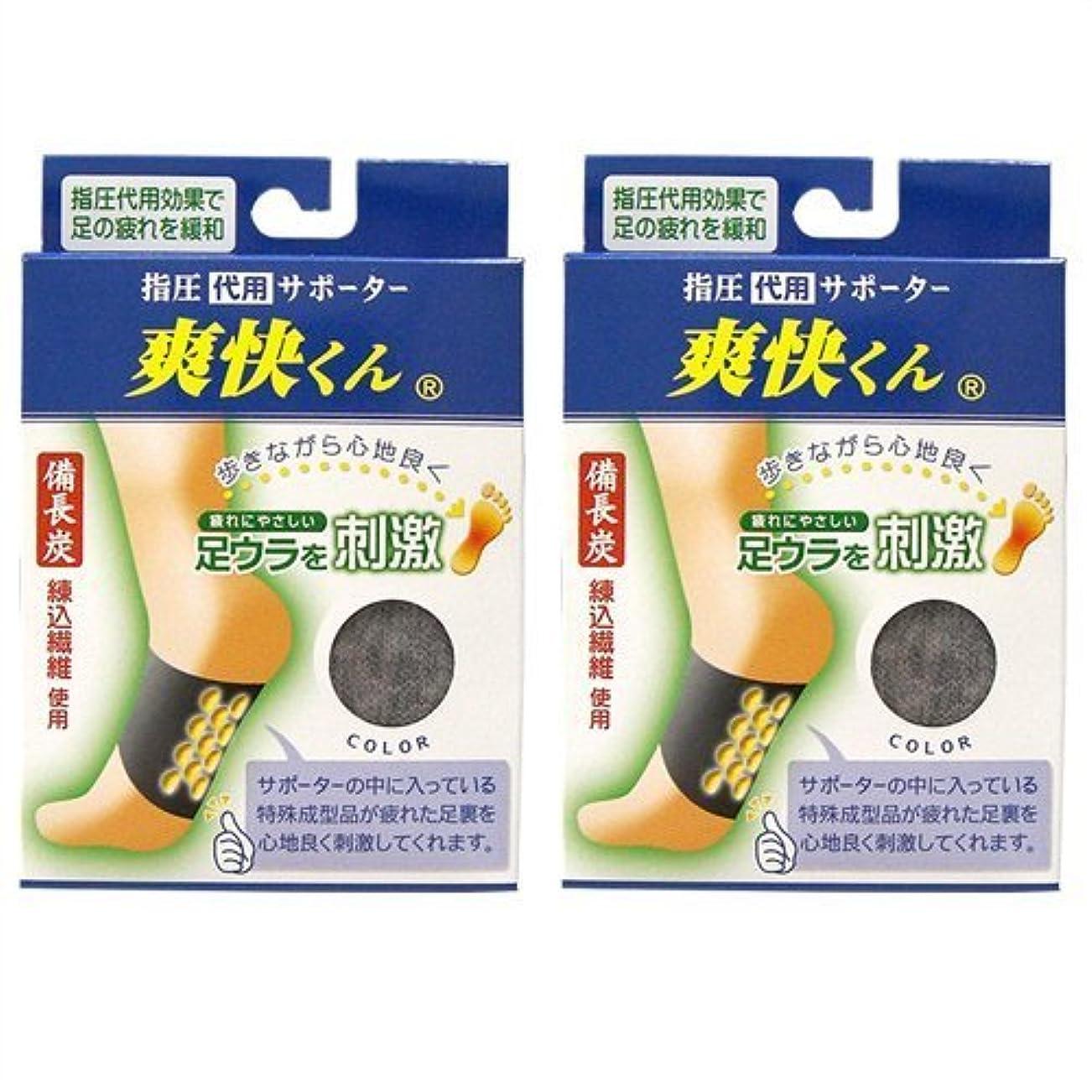 花束突進いわゆる爽快くん(SV-220) ×2個セット
