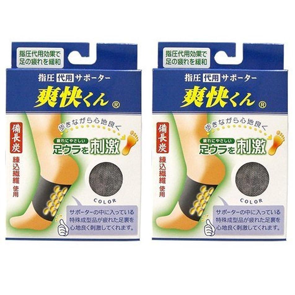 オゾン刈り取るスピン爽快くん(SV-220) ×2個セット