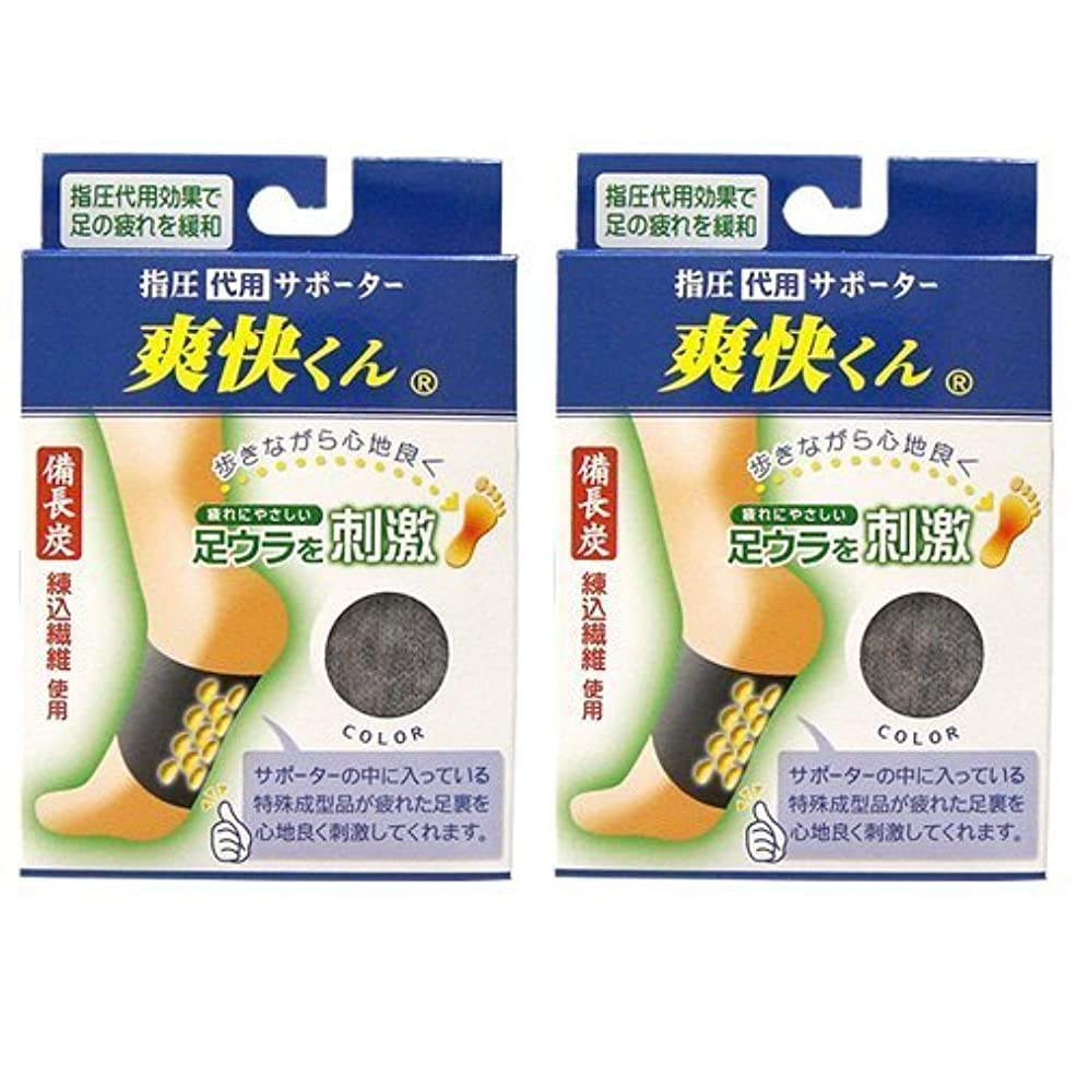 関税。暖炉爽快くん(SV-220) ×2個セット