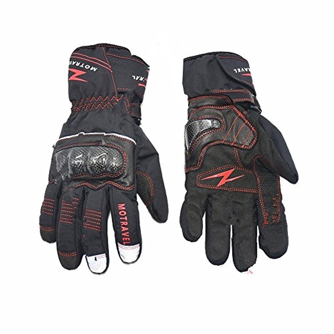 着る空のペレット快適 冬のオートバイの手袋 防水カーボンファイバーウォーム手袋オートバイ乗馬スキーハイキング (サイズ : L)