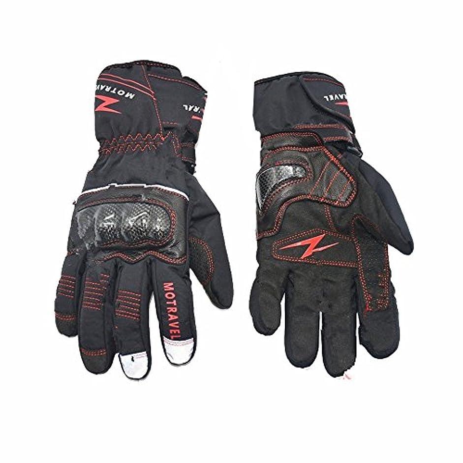 反動うなる影のある快適 冬のオートバイの手袋 防水カーボンファイバーウォーム手袋オートバイ乗馬スキーハイキング (サイズ : L)