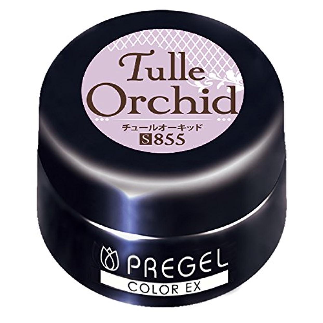 バケツつまずく貸すPRE GEL カラーEX チュールオーキッド855 3g UV/LED対応 カラージェル