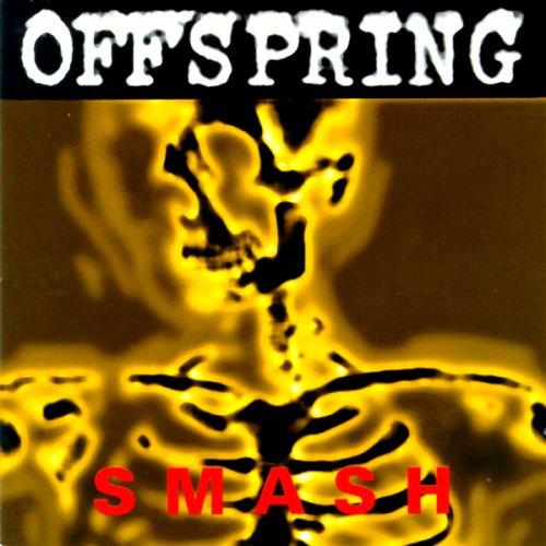 THE OFFSPRING(オフスプリング)JAPAN TOUR 2019 来日公演 セトリ