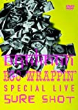 SPECIAL LIVE DVD「BRAHMAN/EGO-WRAPPIN' SPECIAL LIVE SURE SHOT」