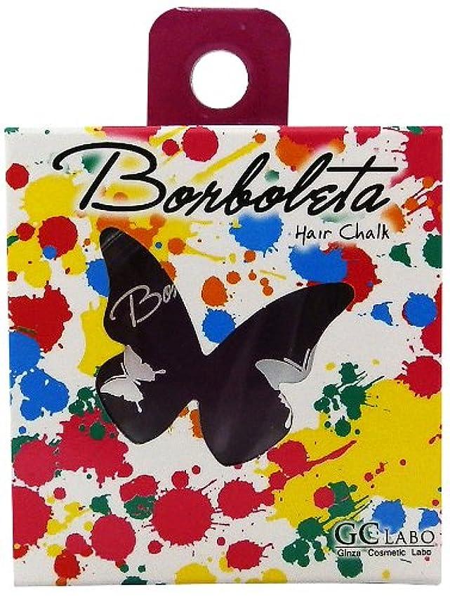 レタッチ乏しい別れるBorBoLeta(ボルボレッタ)ヘアカラーチョーク パープル
