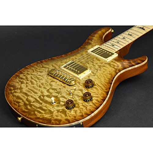 Paul Reed Smith / Private Stock #2394 McCarty Semi Hollow With Piezo Burnt Almond Smoked Burst
