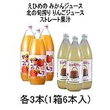 100%ストレートジュース味比べ 伯方果汁 えひめのみかんジュース / 川原 北の旬搾り りんごジュース 1L瓶 各3本 1箱(6本入)