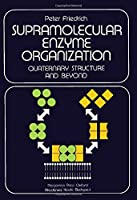 Supramolecular Enzyme Organization: Quaternary Structure and Beyond