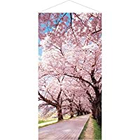 桜並木タペストリー(防炎加工) 春POP お花見・さくら テトロンポンジ H180×W90cm