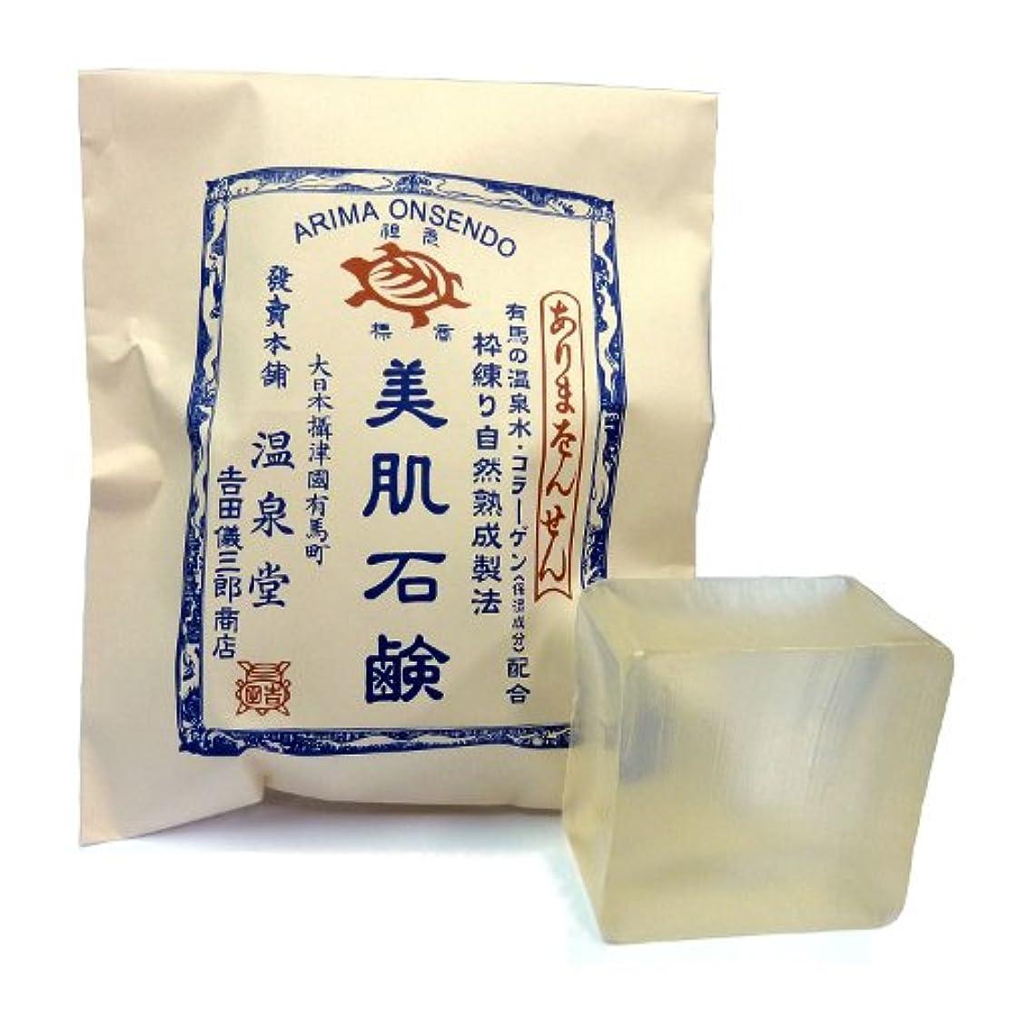 粒子欺く忠誠カメ印 枠練自然熟成製法美肌石鹸