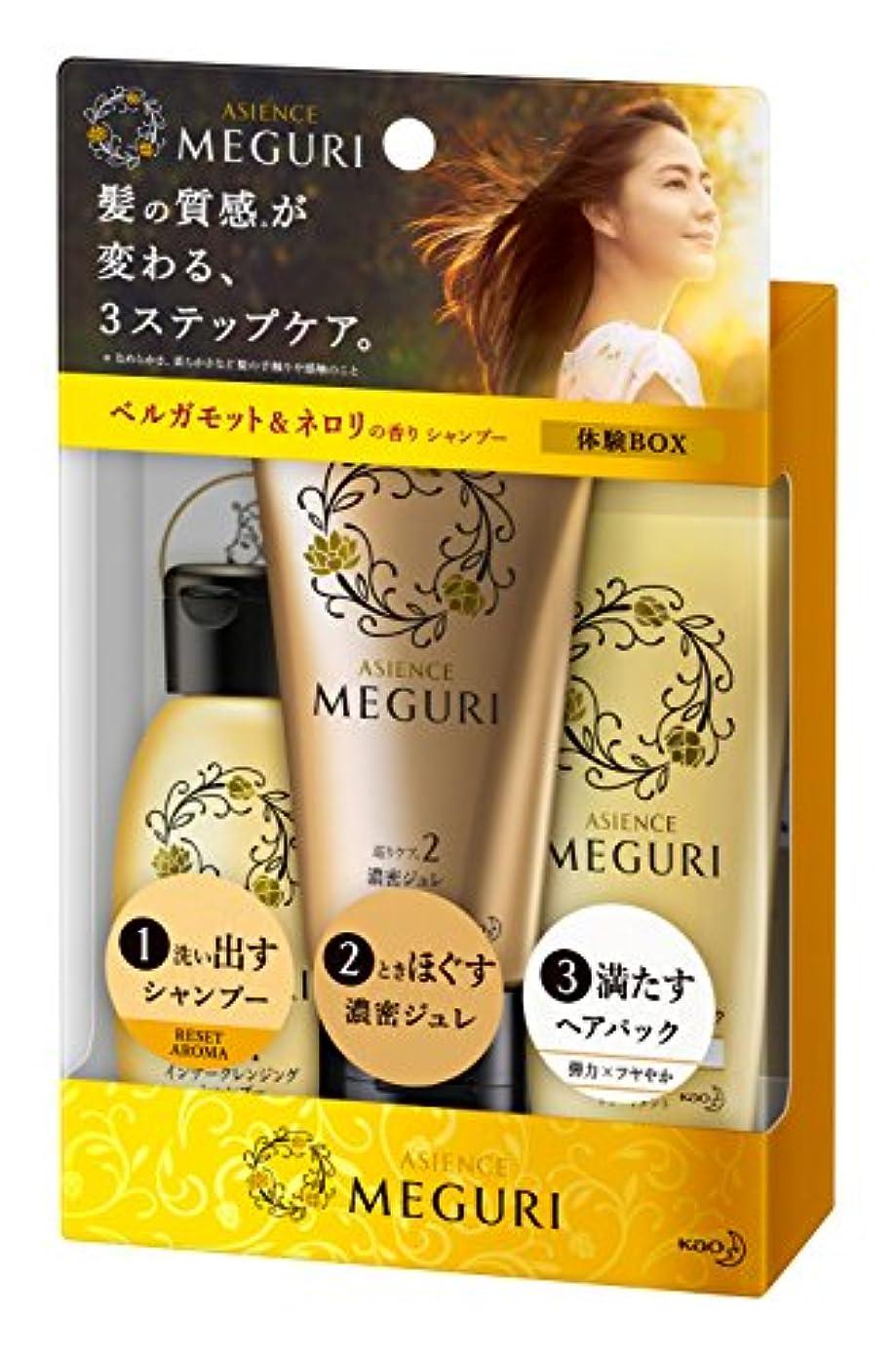 美容師画家粘液【ミニセット】アジエンス MEGURI 体験BOX RESET 145g