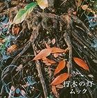 朽木の灯(初回)(DVD付)()