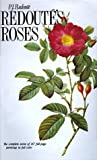 Redoute's Roses