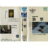 襲撃 スズメバチの恐るべき生態 [VHS]