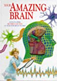 Cover of Your Amazing Brain Hb