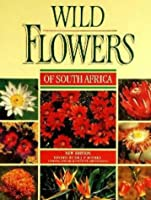 Wildflowers of South Africa