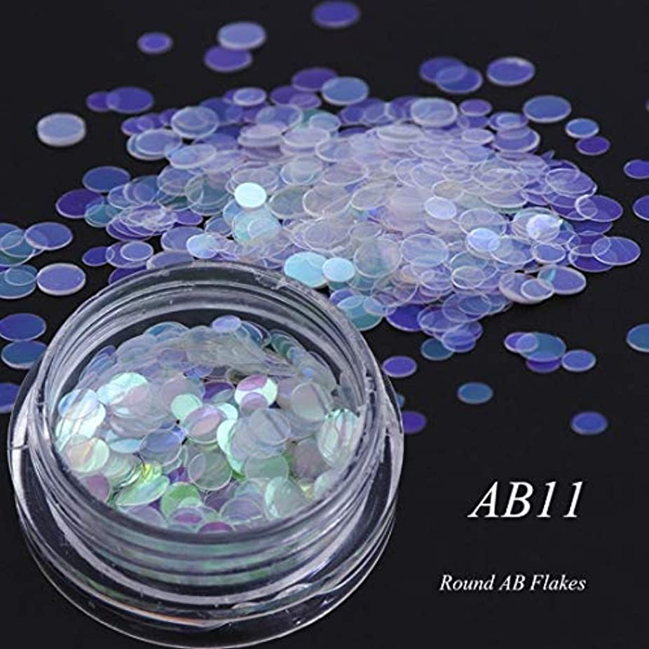精度ネットアストロラーベYan 3個のカメレオンカラースパンコールネイルアートグリッターフレークUVジェル装飾ツール(AB01) (色 : AB11)