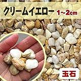 天然石 玉石砂利 クリームイエロー 1-2cm サンプル
