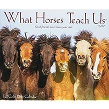 What Horses Teach Us 2019 Box Calendar