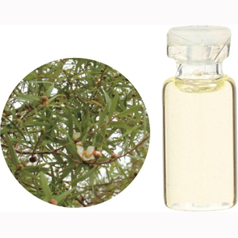 不完全形影響力のある生活の木 C レモン ティートゥリー エッセンシャルオイル 1000ml
