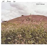 HILL, FLOWER, FOG [12 inch Analog]
