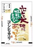 信州産 玄米 こしひかり 5kg 平成29年産