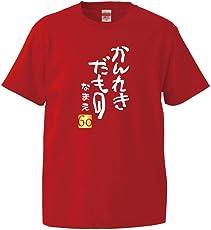 シャレもん 名入れ 還暦 半袖 Tシャツ 【かんれきだもの】 還暦祝い プレゼント ビッグサイズあり