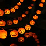KAILEDI Halloween String Lights, LED Pumpkin Lights, Holiday Lights for Outdoor Decor,2 Modes Steady/Flickering Lights(20 One