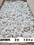 店長一番お勧め 真っ白ホワイト玉砂利10kg (3分(7mm?15mm))