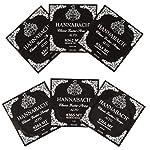 HANNABACH アルトギター E836MT Black Set