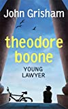 Young Lawyer (Theodore Boone)