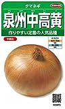 サカタのタネ 実咲野菜3973 泉州中高黄 タマネギ