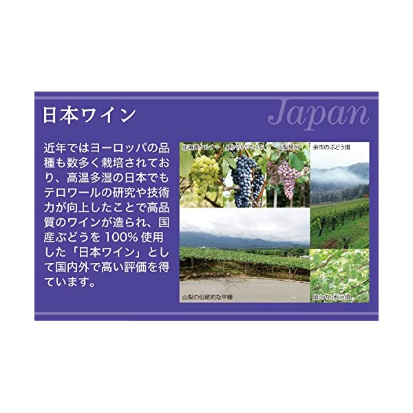 日本ワイン グランポレール エスプリ・ド・ヴァ...の紹介画像7