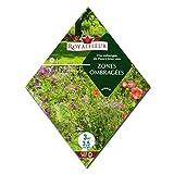 [シェードガーデンに!春・秋まき 花タネ][フランス花の種]日陰の多年草ガーデンミックス 1袋