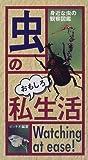 虫のおもしろ私生活―身近な虫の観察図鑑 画像