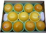 フロリダ産 グレープフルーツセット  ホワイト(3個)ルビー(8個)東洋フルーツ(有)