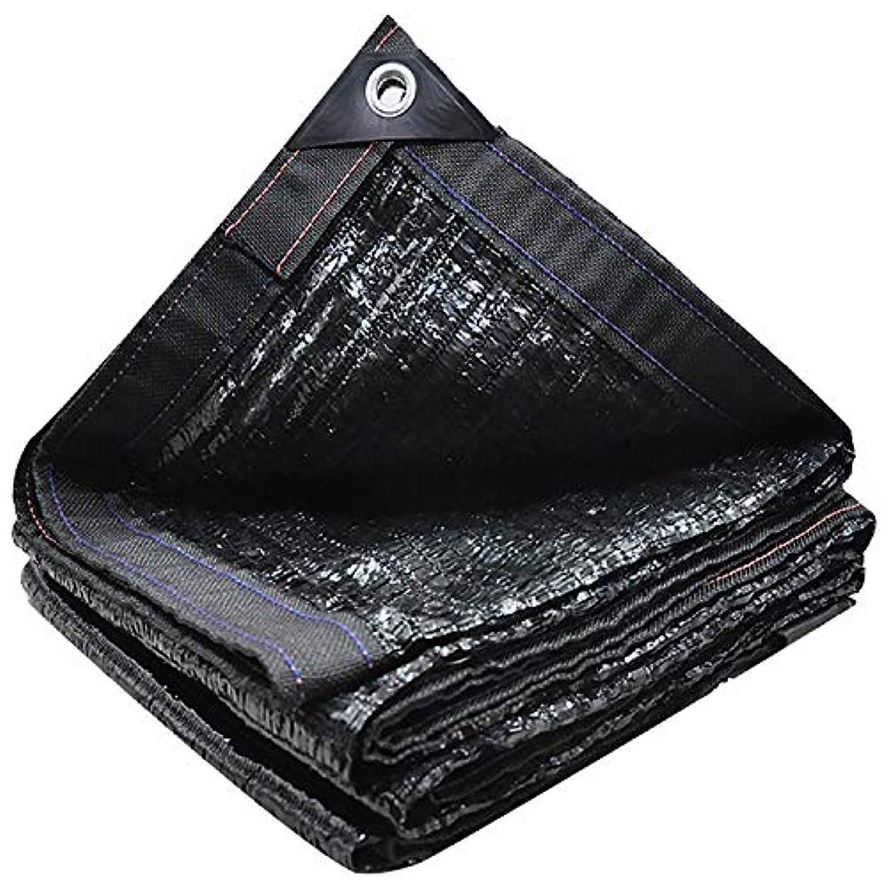 視線章拾うサンシェード?シェルター グロメット、庭のテラスのための日焼け止めブロックの生地の日曜日の網が付いている95%の日焼け止めの陰の布の網の網の陰 (Color : Black, Size : 19.8x19.8ft/6x6m)
