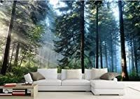Weaeo カスタム壁画の写真3D部屋の壁紙緑の森の風景テレビのソファの背景壁画3D壁壁画壁3D-200X140Cm