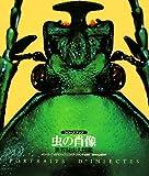 クローズアップ 虫の肖像―世界昆虫大図鑑 画像