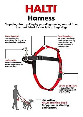 Company of Animals Halti Harness for Dogs, Medium, Black/Red