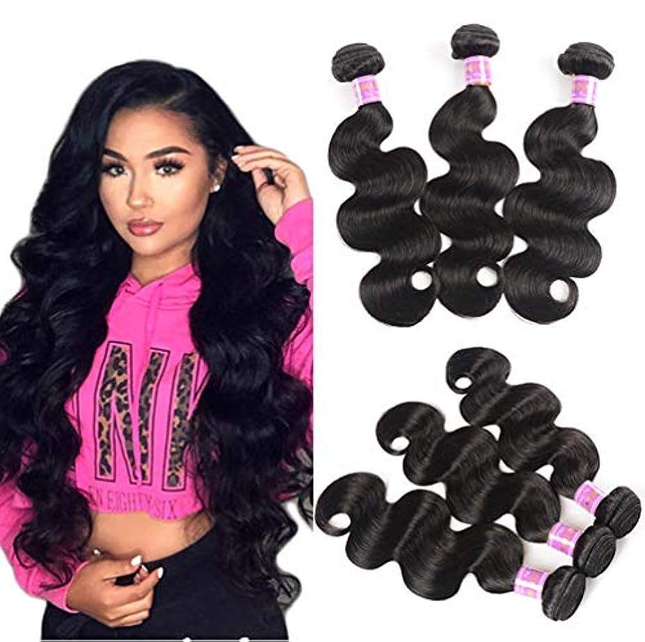起点宣伝タイルブラジルの毛の束9Aブラジルボディ波のバージンの毛100%未処理の二重よこ糸の人間の毛髪延長3束