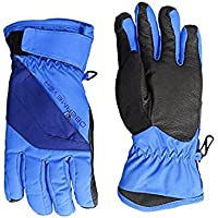 オーバーメイヤー Obermeyer Kids Glove Stellar Blue Cornice Gloves (Big Kids) [並行輸入品]