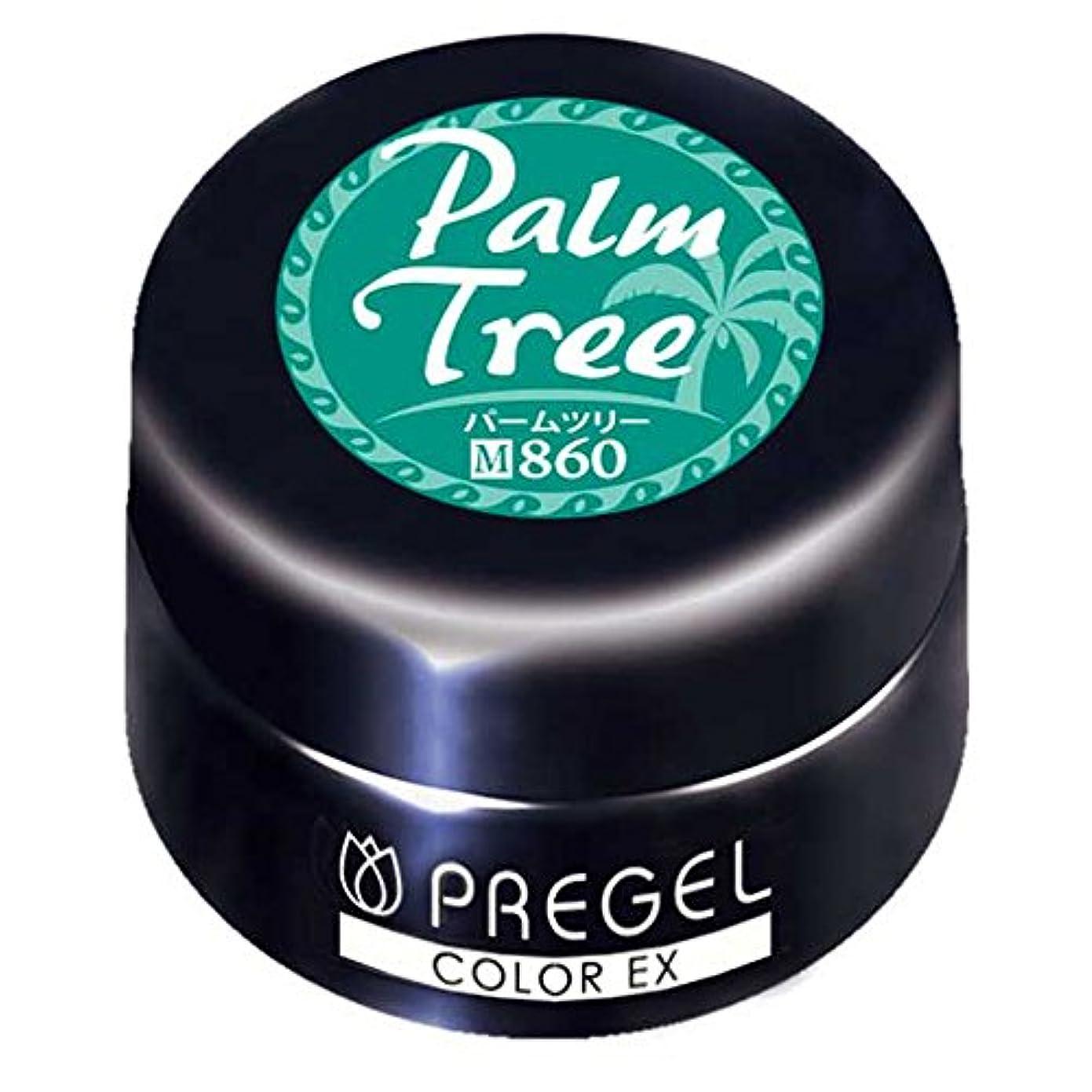 祈り三角形昼間PRE GEL カラーEX パームツリー 860 3g UV/LED対応