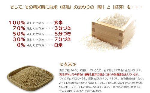 28年産 鹿児島県産 イクヒカリ 10kg 白米+7分[精米後 約9.1kg] ご注文後に精米してお届け。鹿児島のブランド米「 分づき 精米 」承ります。(贈り物にも)