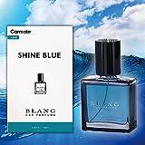 カーメイト BLANG ブラング 車用 消臭 芳香剤 リキッド BC シャインブルー L833