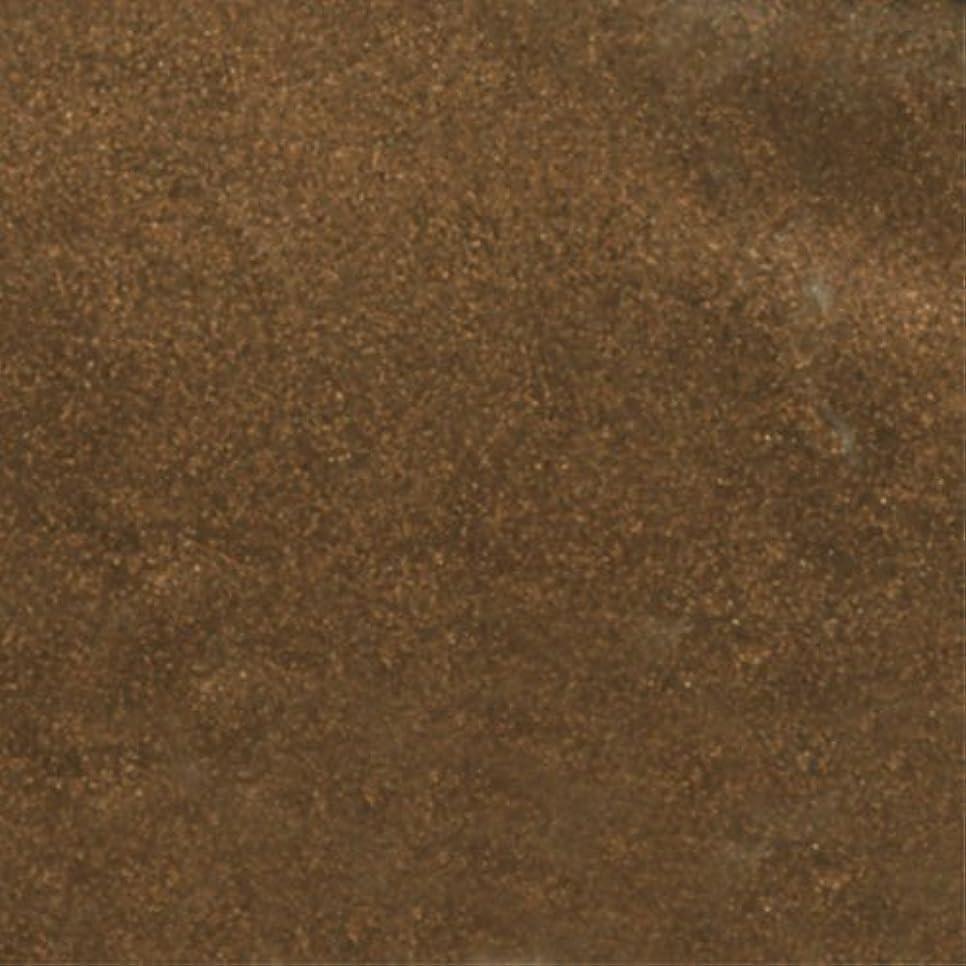 奨励タフジョリーピカエース ネイル用パウダー シャインパウダー #822 こげ茶 0.25g